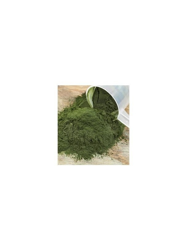 Organiczna Spirulina Super Green (proszek - 40 g) - suplement diety