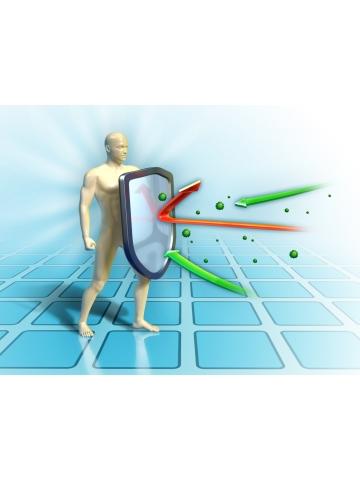 ImmunoVir - artemizyna andrographis glicyryzyna laktoferyna (60 kapsułek) - suplement diety